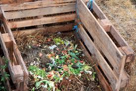 compost organico