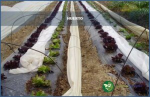 Huerto_jardineria del valles