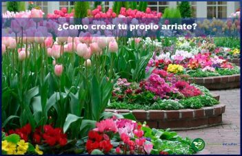C mo crear tu propio arriate - Plantas para arriates ...