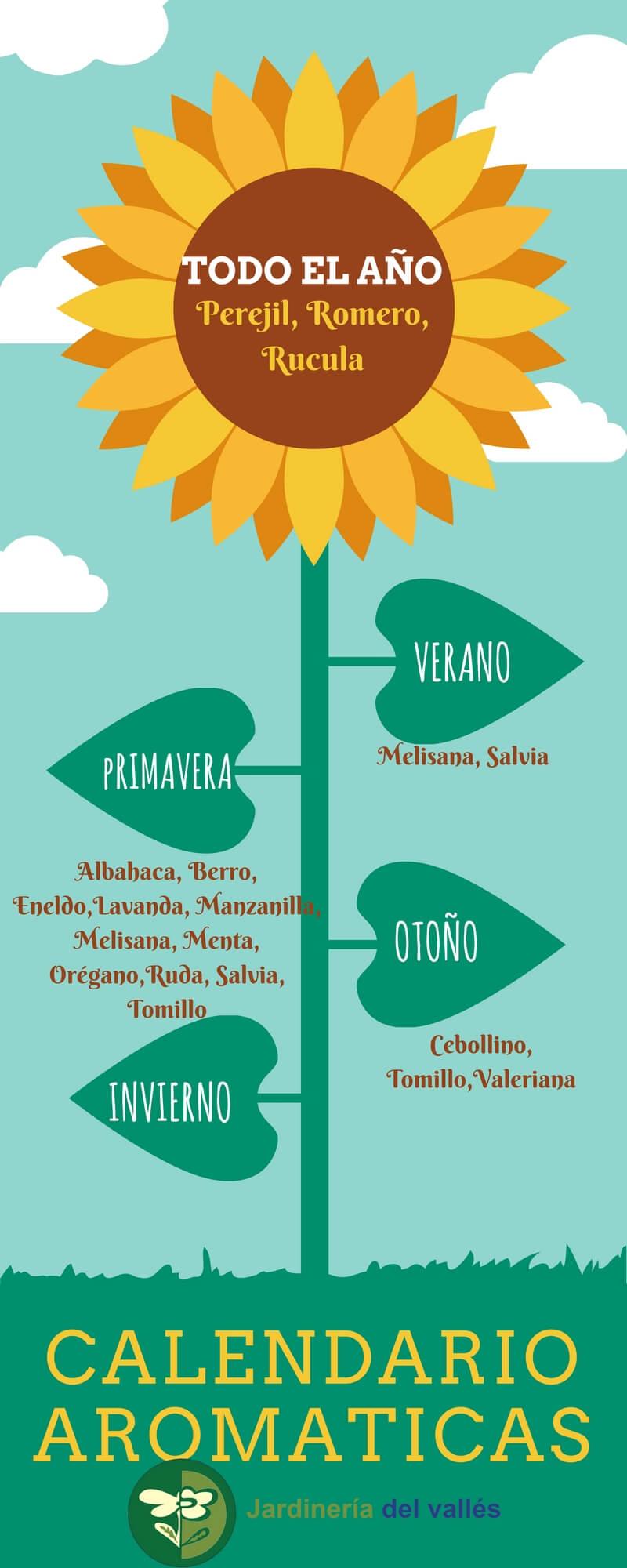 Practico calendario para sembrar aromáticas