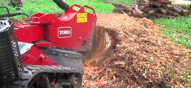 destoconadora dingo, para eliminar troncos talados