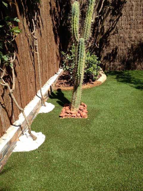 un jardín minimalista