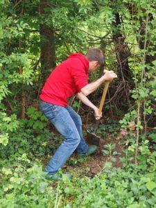 paso 2. preparar para sembrar el césped