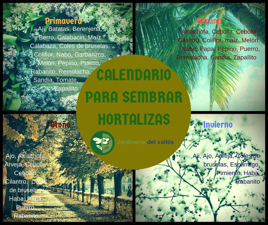 Infografia de calendario para sembrar hortalizas