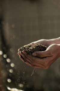ahorrar agua al regar el césped de acuerdo al tipo de suelo
