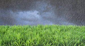 relación entre la humedad y el pH en el suelo