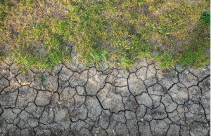 compactación del suelo escarificar y airear