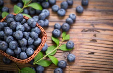 frutos del bosque arándano ecológico
