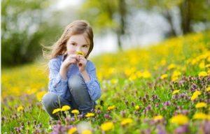 el cesped que va mejor con las flores silvestres