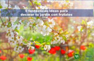 5 fantásticas ideas para decorar tu jardín con frutales