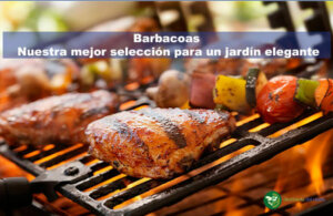 barbacoas destacada