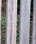 El color grisace en la madera. ¿como solucionarlo?