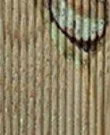 Los nudos en la madera