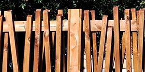 Valla madera jardín papyrus