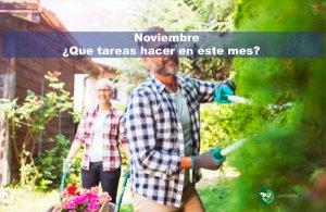 Jardín en noviembre