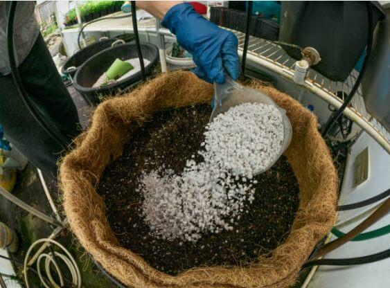 Perlita y vermiculita propiedades
