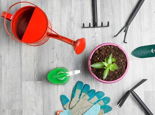 Tareas del jardín en noviembre las herramientas